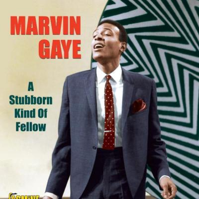 Marvin Gaye - A Stubborn Kind of Fellow